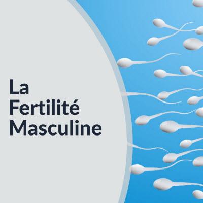 fertilité masculine : wicbirmingham2018.com